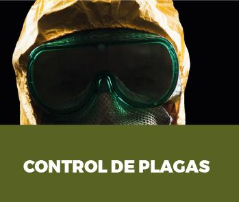 control-de-plagas-profesional