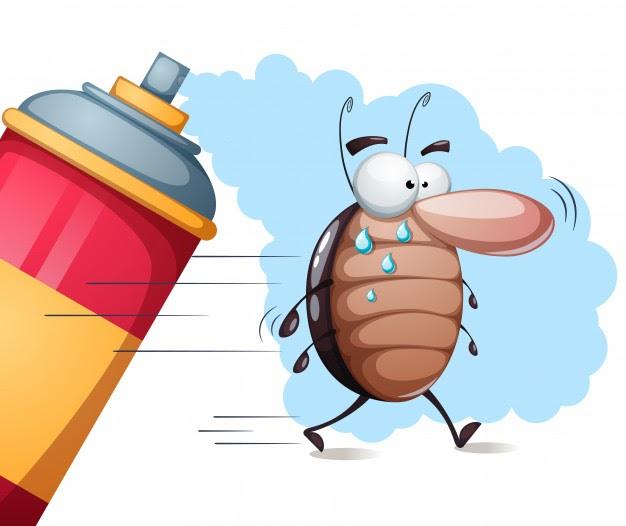 especies cucarachas