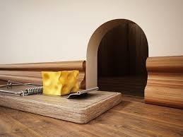 ratones casa