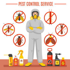 control integral plagas