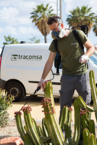 Técnico de Traconsa